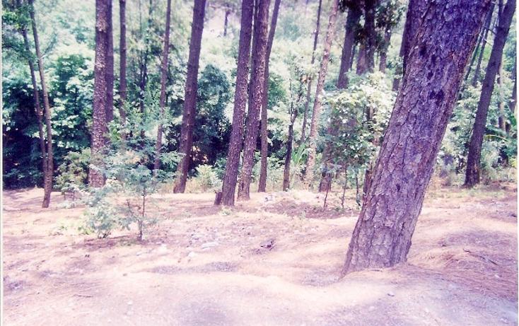 Foto de terreno habitacional en venta en  , avándaro, valle de bravo, méxico, 1135429 No. 03
