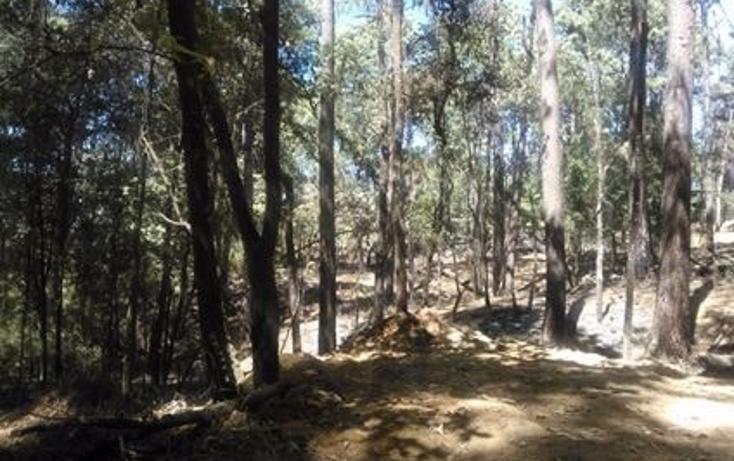 Foto de terreno habitacional en venta en  , avándaro, valle de bravo, méxico, 1140641 No. 02