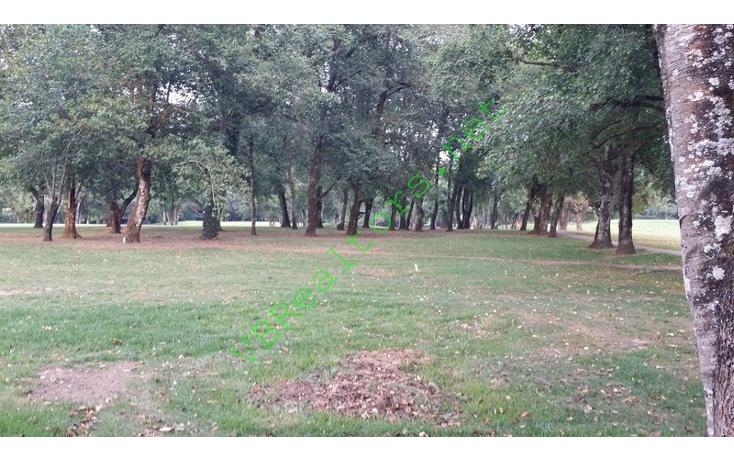 Foto de terreno habitacional en venta en  , av?ndaro, valle de bravo, m?xico, 1481517 No. 04