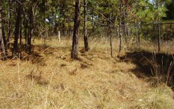 Foto de terreno habitacional en venta en  , avándaro, valle de bravo, méxico, 1697922 No. 01