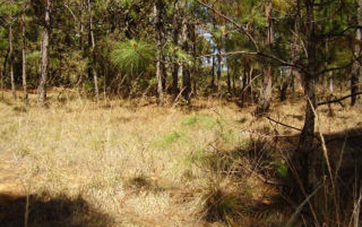 Foto de terreno habitacional en venta en  , avándaro, valle de bravo, méxico, 1697922 No. 02