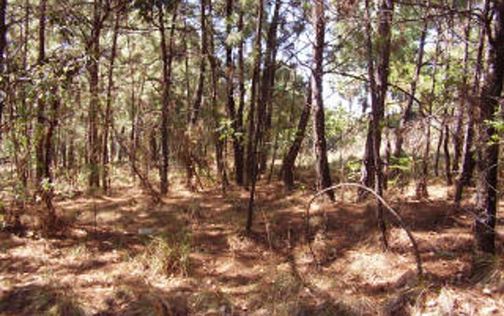 Foto de terreno habitacional en venta en  , avándaro, valle de bravo, méxico, 1697922 No. 04