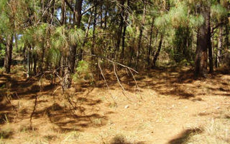 Foto de terreno habitacional en venta en  , avándaro, valle de bravo, méxico, 1697922 No. 06