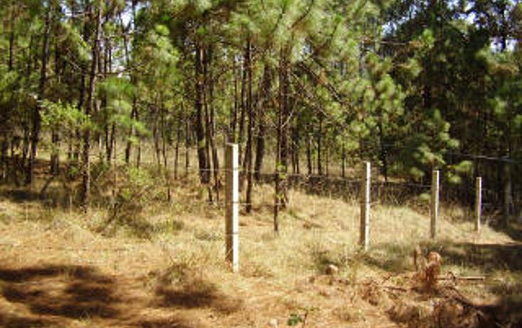 Foto de terreno habitacional en venta en  , avándaro, valle de bravo, méxico, 1697922 No. 07