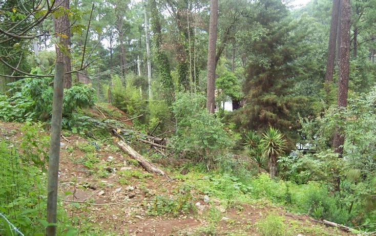 Foto de terreno habitacional en venta en  , avándaro, valle de bravo, méxico, 1697968 No. 01