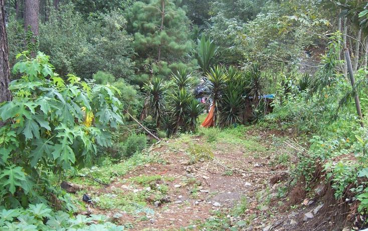 Foto de terreno habitacional en venta en  , avándaro, valle de bravo, méxico, 1697968 No. 02
