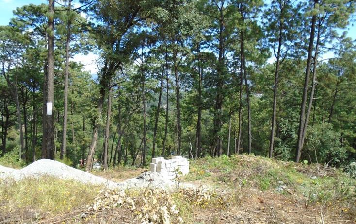 Foto de terreno habitacional en venta en  , avándaro, valle de bravo, méxico, 1698036 No. 03