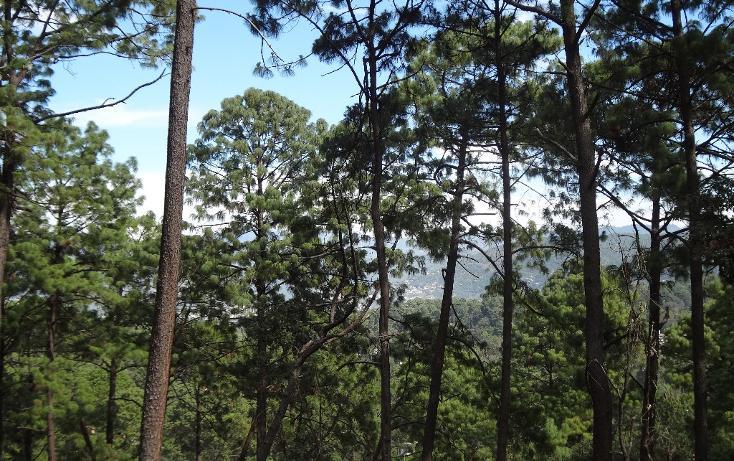 Foto de terreno habitacional en venta en  , avándaro, valle de bravo, méxico, 1698036 No. 05