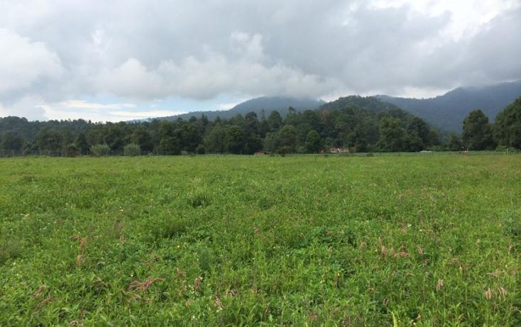 Foto de terreno habitacional en venta en  , avándaro, valle de bravo, méxico, 1698054 No. 01