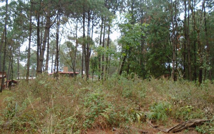 Foto de terreno habitacional en venta en  , avándaro, valle de bravo, méxico, 1698062 No. 01