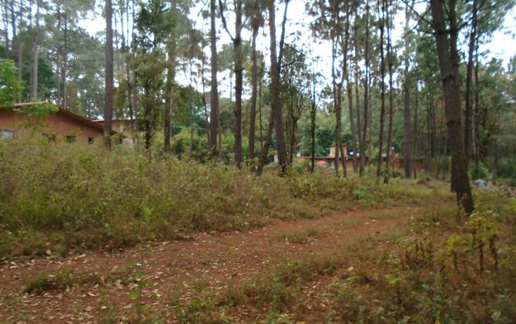 Foto de terreno habitacional en venta en  , avándaro, valle de bravo, méxico, 1698062 No. 02