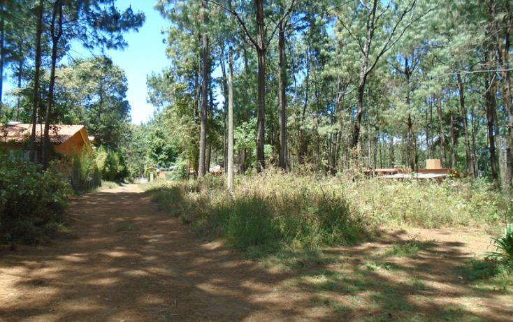 Foto de terreno habitacional en venta en  , avándaro, valle de bravo, méxico, 1698062 No. 04