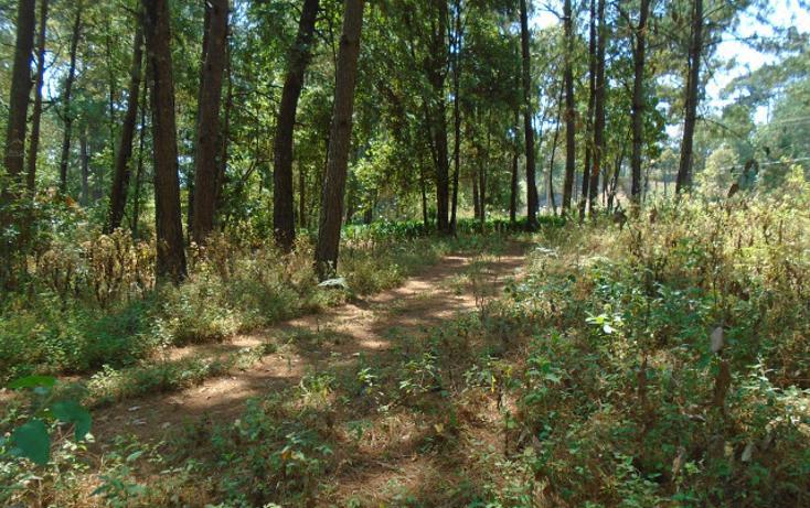 Foto de terreno habitacional en venta en  , avándaro, valle de bravo, méxico, 1698062 No. 07