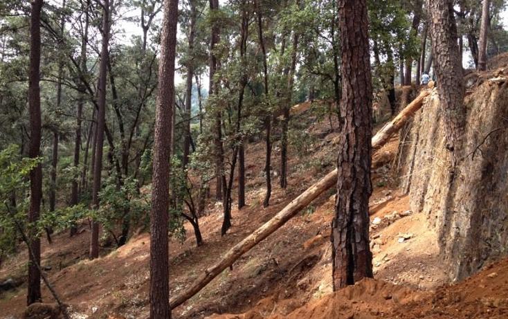 Foto de terreno habitacional en venta en  , avándaro, valle de bravo, méxico, 1698076 No. 07