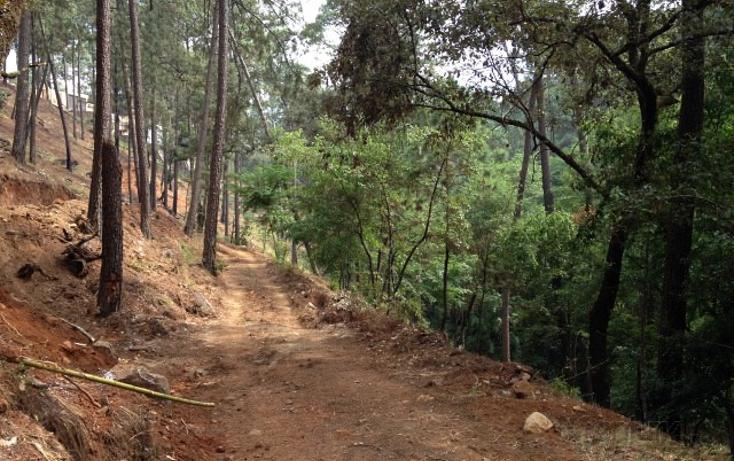 Foto de terreno habitacional en venta en  , avándaro, valle de bravo, méxico, 1698076 No. 08