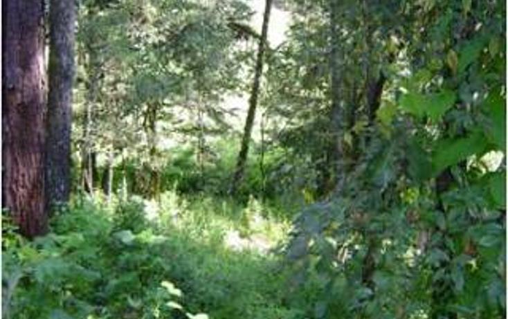 Foto de terreno habitacional en venta en  , avándaro, valle de bravo, méxico, 1798769 No. 04