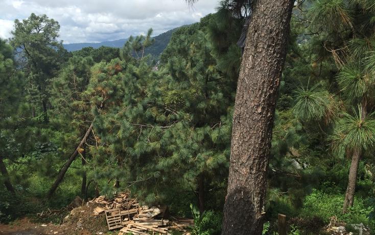 Foto de terreno habitacional en venta en  , avándaro, valle de bravo, méxico, 2736489 No. 02