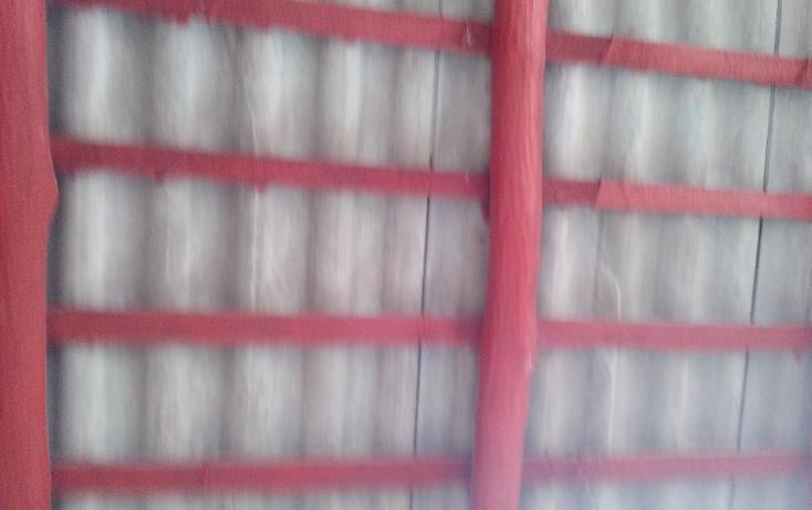 Foto de casa en venta en  , avenida, champotón, campeche, 1130261 No. 09
