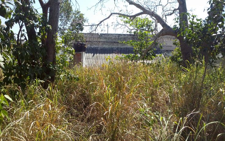 Foto de casa en venta en  , avenida, champotón, campeche, 1130261 No. 14