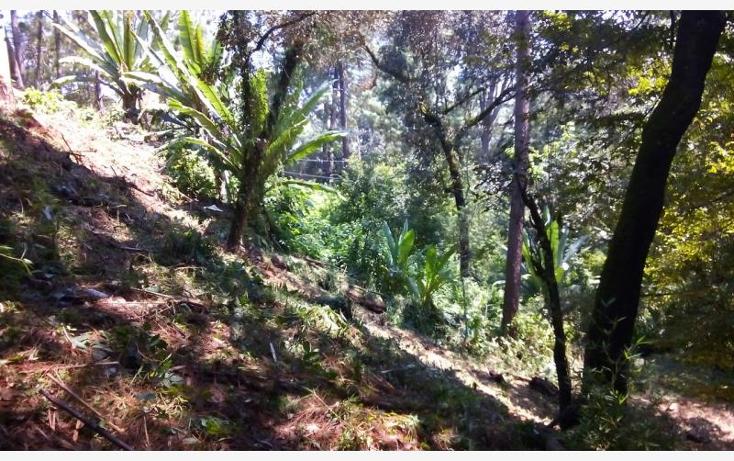 Foto de terreno habitacional en venta en avenida de las fuentes nonumber, emiliano zapata, valle de chalco solidaridad, m?xico, 1612420 No. 02