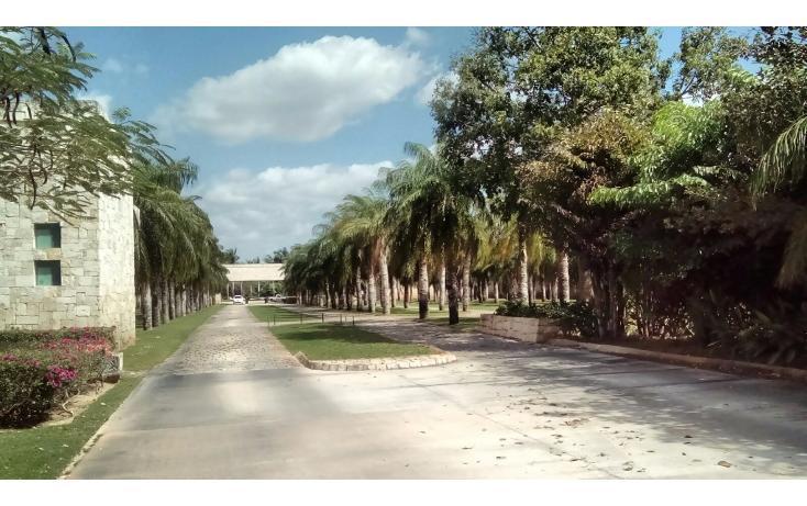 Foto de terreno habitacional en venta en avenida del jaguar 69 , yucatan, mérida, yucatán, 1719598 No. 05