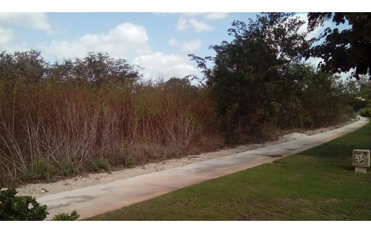 Foto de terreno habitacional en venta en avenida del jaguar 69 , yucatan, mérida, yucatán, 1719598 No. 06