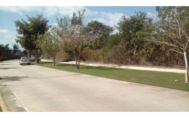 Foto de terreno habitacional en venta en avenida del jaguar 69 , yucatan, mérida, yucatán, 1719598 No. 07