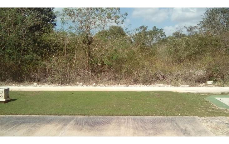 Foto de terreno habitacional en venta en avenida del jaguar 69 , yucatan, mérida, yucatán, 1719598 No. 08