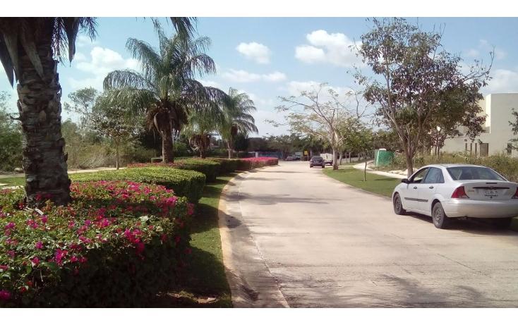 Foto de terreno habitacional en venta en avenida del jaguar 69 , yucatan, mérida, yucatán, 1719598 No. 09