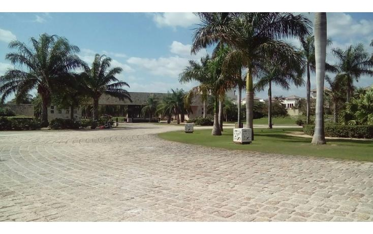 Foto de terreno habitacional en venta en avenida del jaguar 69 , yucatan, mérida, yucatán, 1719598 No. 12