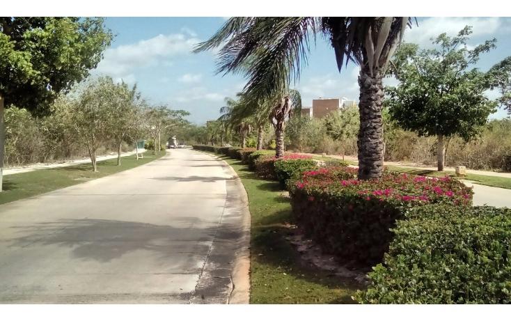 Foto de terreno habitacional en venta en avenida del jaguar 69 , yucatan, mérida, yucatán, 1719598 No. 14
