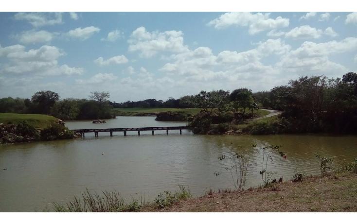 Foto de terreno habitacional en venta en avenida del jaguar 69 , yucatan, mérida, yucatán, 1719598 No. 15