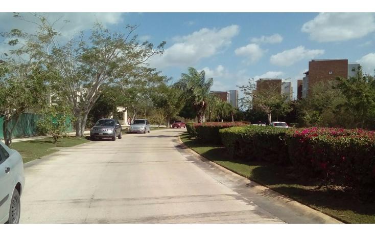 Foto de terreno habitacional en venta en avenida del jaguar 69 , yucatan, mérida, yucatán, 1719598 No. 16