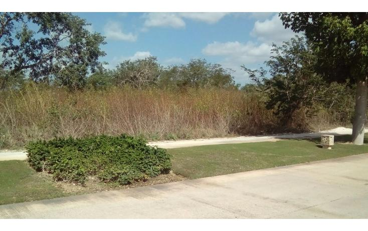 Foto de terreno habitacional en venta en avenida del jaguar 69 , yucatan, mérida, yucatán, 1719598 No. 17