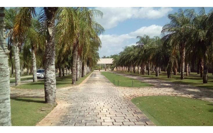 Foto de terreno habitacional en venta en avenida del jaguar 69 , yucatan, mérida, yucatán, 1719598 No. 19
