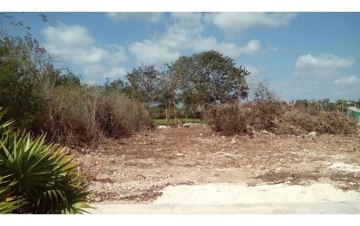 Foto de terreno habitacional en venta en avenida del jaguar 69 , yucatan, mérida, yucatán, 1719598 No. 20