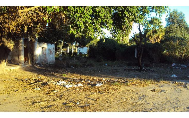 Foto de terreno habitacional en venta en avenida hidalgo, entre morelos y guerrero s/n , higueras de zaragoza centro, ahome, sinaloa, 1710134 No. 04
