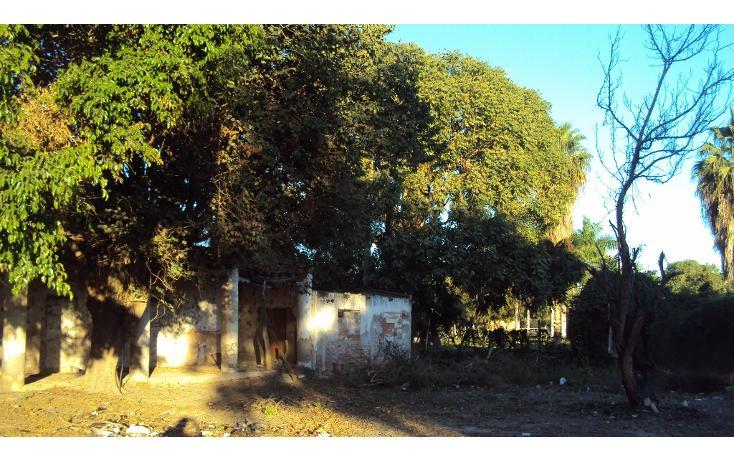 Foto de terreno habitacional en venta en avenida hidalgo, entre morelos y guerrero s/n , higueras de zaragoza centro, ahome, sinaloa, 1710134 No. 05