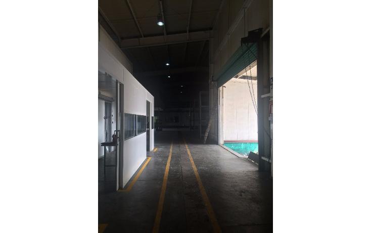 Foto de nave industrial en renta en avenida oriente, numero 113 , puerto pesquero, carmen, campeche, 1800192 No. 05