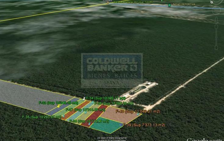 Foto de terreno comercial en venta en  , tulum centro, tulum, quintana roo, 1848506 No. 06