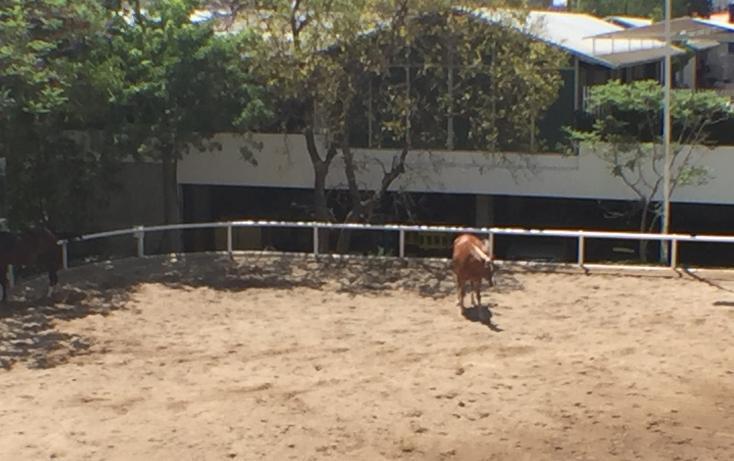 Foto de departamento en venta en ávila camacho , country club, guadalajara, jalisco, 2717485 No. 39