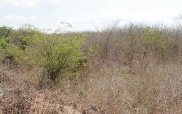 Foto de terreno habitacional en venta en avmario huerta 983, el toreo, mazatlán, sinaloa, 2012238 no 08
