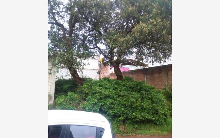 Foto de terreno habitacional en venta en ayehualulco 35, el moral, zacatl?n, puebla, 1744885 No. 03