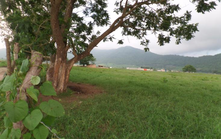 Foto de terreno habitacional en venta en  , aztl?n el verde, tepic, nayarit, 1225573 No. 06