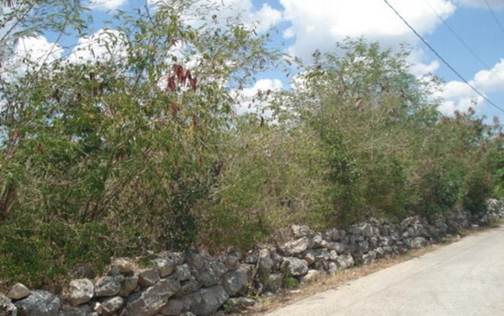 Foto de terreno habitacional en venta en  , baca, baca, yucatán, 1060269 No. 01