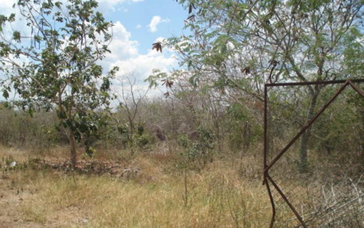 Foto de terreno habitacional en venta en  , baca, baca, yucatán, 1060269 No. 02