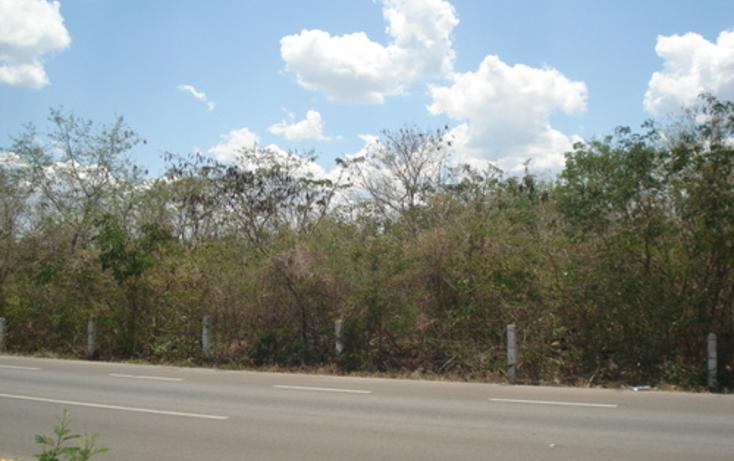 Foto de terreno habitacional en venta en  , baca, baca, yucatán, 1088435 No. 02