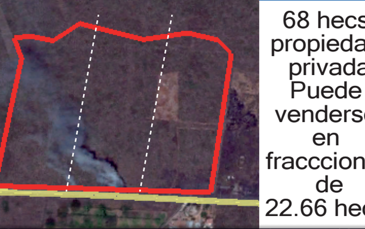 Foto de terreno habitacional en venta en  , baca, baca, yucatán, 1389141 No. 02