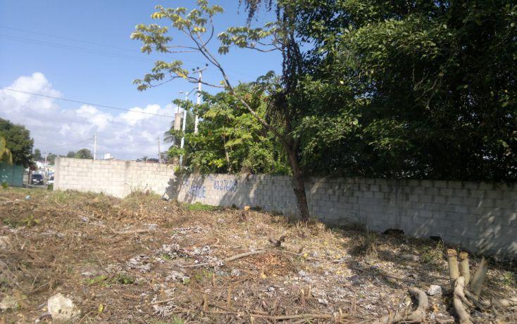 Foto de terreno habitacional en venta en, bacalar, bacalar, quintana roo, 1109147 no 01
