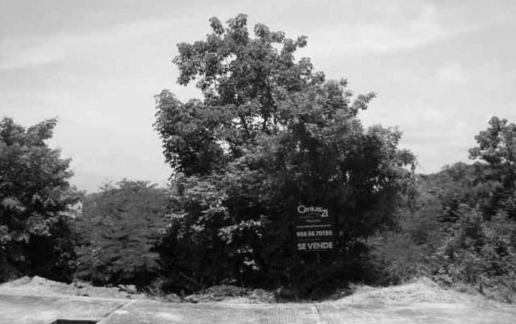 Foto de terreno habitacional en venta en  , bahía de conejo, santa maría huatulco, oaxaca, 1073107 No. 05